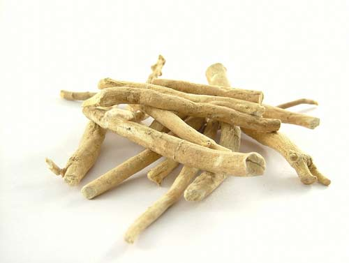 ashwagandha-dry-root-image